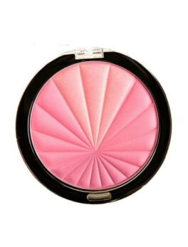 Milani Color Harmony Blush - Pink Play