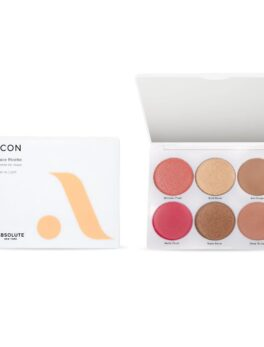 Absolute New York Icon Face Palette - All in One Blush, Contour & Highlighter - MFPF01 Fair to Light - 15gm